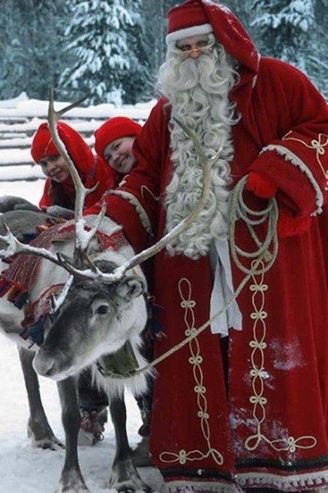 White & Gold Lo sciopero delle renne